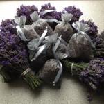 Lavendeloogst 2012: 10 bosjes en 7 zakjes